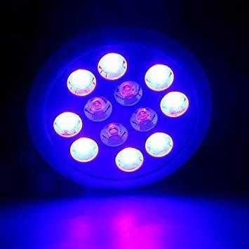 ☆新品☆ LED アクアリウムライト 24W 青8 紫外線4 水槽照明 水草 サンゴ 熱帯魚 観賞魚 植物育成_画像2