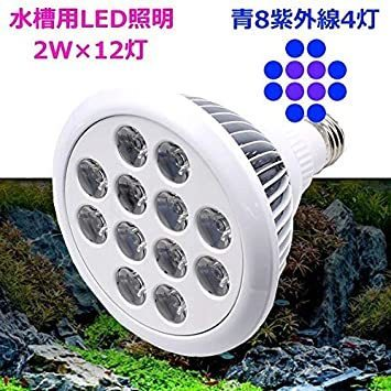 ☆新品☆ LED アクアリウムライト 24W 青8 紫外線4 水槽照明 水草 サンゴ 熱帯魚 観賞魚 植物育成_画像3