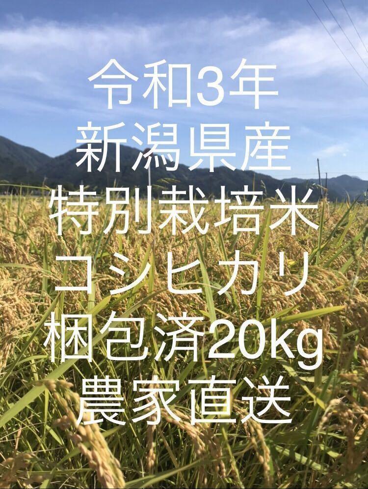 【新米】令和3年!新潟県産特別栽培米コシヒカリ玄米!20kg!農家直送!_画像1