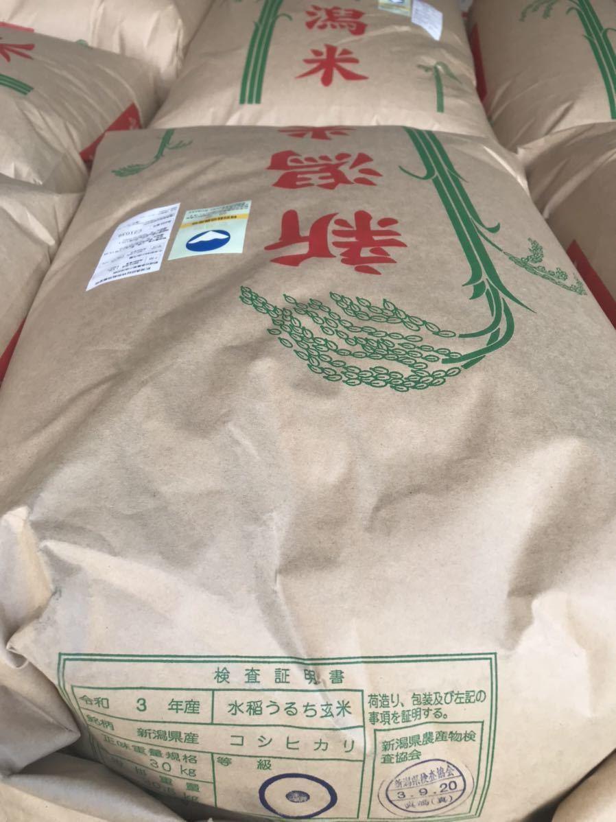 【新米】令和3年!新潟県産特別栽培米コシヒカリ玄米!20kg!農家直送!_画像3