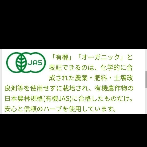 【2箱(×20袋入)】ポンパドール オーガニック スイートミントティー 紅茶 ハーブティー リコリス ノンカフェイン