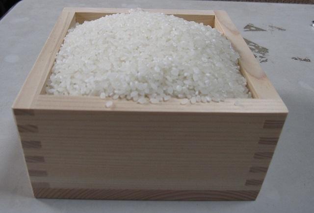 鳥取県令和3年産減農薬 新米ひとめぼれ玄米10kg送料無料 精米無料 _画像3