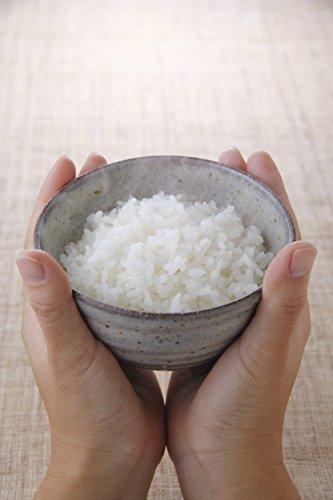 5kg こしひかり 【精米】新潟県北越後産 5kg 特別栽培米白米 平成30年産_画像3