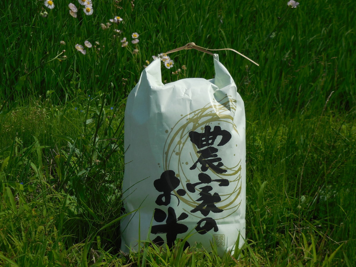 ★厳選★令和2年産★宮城県産つや姫★環境保全米★玄米10kg!!_米袋は随時変更致しますのでご了承下さい。