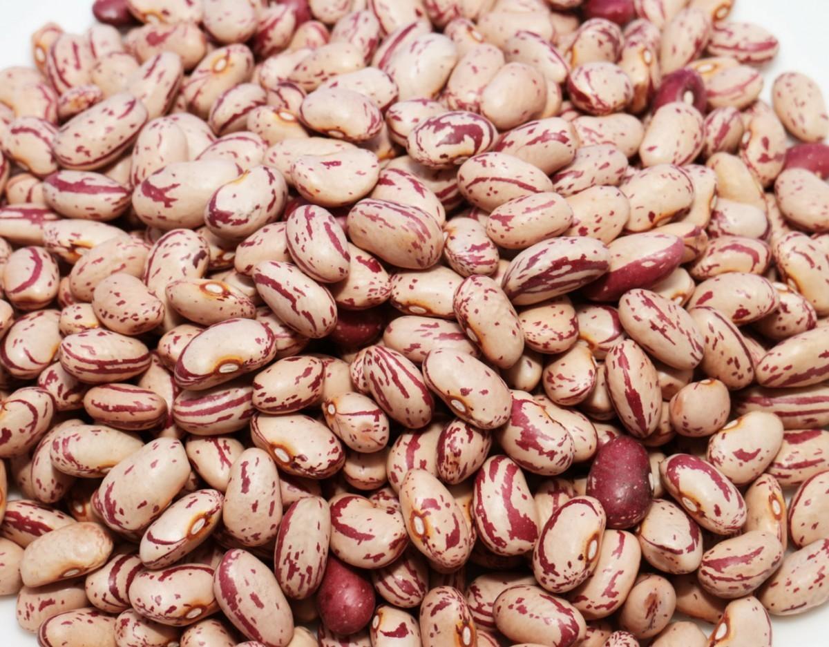豆力 豆専門店のうずら豆(クランベリー豆) 1kg(200g×5袋)_画像2