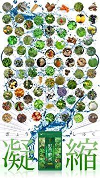 約3ヶ月分 90粒 シードコムス 野草酵素 サプリメント 野菜 野草 果物 発酵 熟成 ダイエット (約3ヶ月ェ 90粒)_画像3