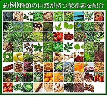 約3ヶ月分 90粒 シードコムス 野草酵素 サプリメント 野菜 野草 果物 発酵 熟成 ダイエット (約3ヶ月ェ 90粒)_画像6