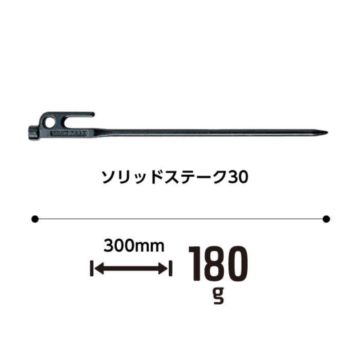 スノーピーク ペグ 30cm 3本セット ソリッドステーク30 R-103