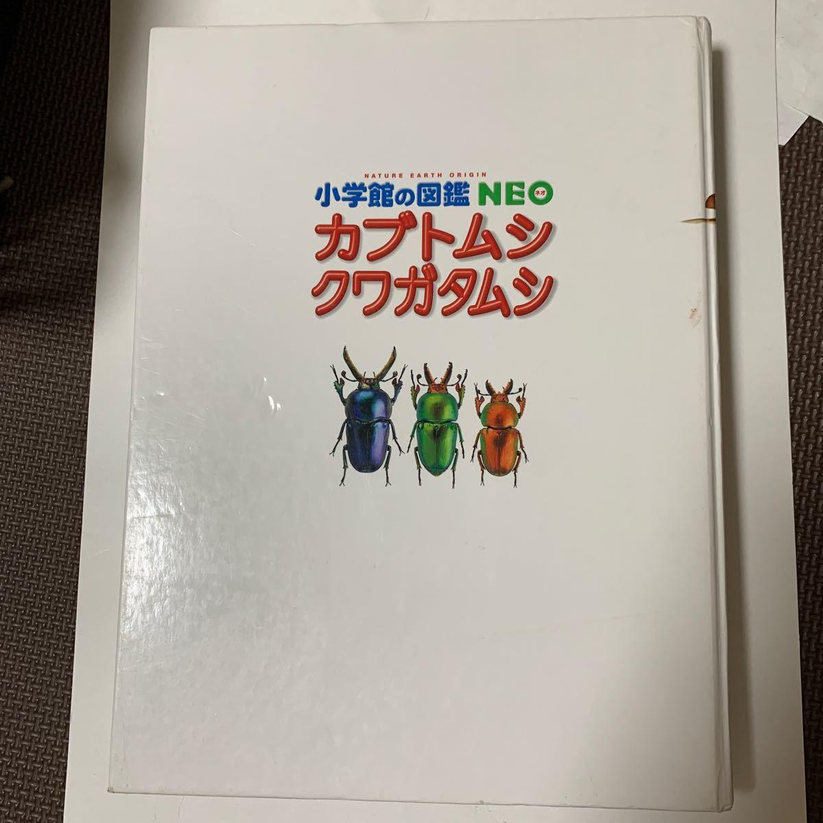 小学館の図鑑NEOカブトムシクワガタムシ