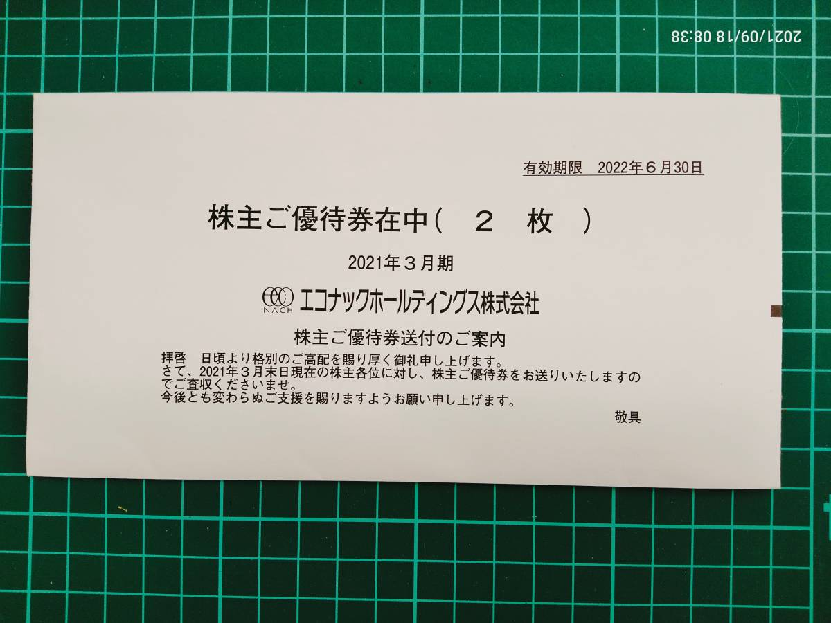 C003  エコナックホールディングス 新宿歌舞伎町 テルマー湯(天然温泉) 株主優待券 平日ご利用券 有効期限2022年6月30日 2枚_画像1