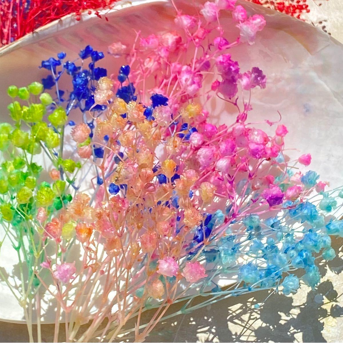 かすみ草オーバータイムアソート メーカー半量 大地農園 ハーバリウム ハーバリウム花材 プリザーブドフラワー カスミ