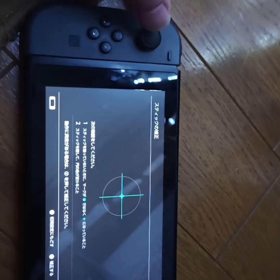 Joy-Con ジョイコン Nintendo Switch  グレー