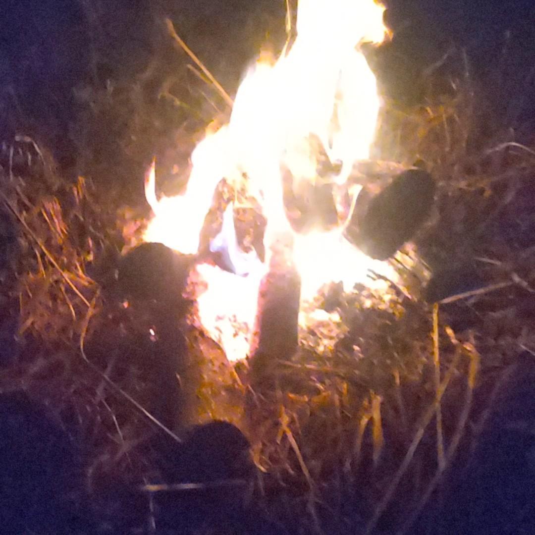 薪ストーブ 薪 キャンプなど 焚き火 の薪などに