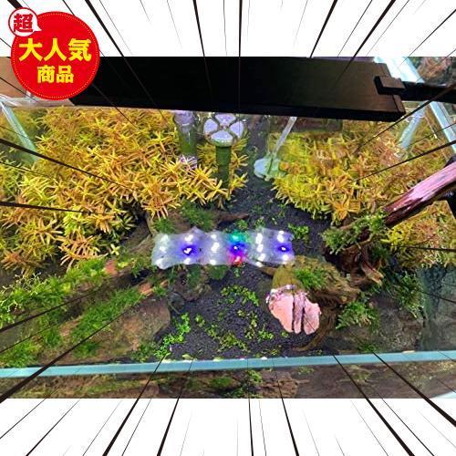 LED水槽ライト 熱帯魚ライト 水槽照明用 9W フルスペクトル 照明モード調整可能 観賞魚飼育 水草育成 25-45cm水槽対応 白、青、赤、緑led_画像8