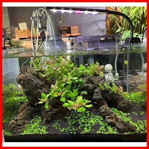 LED水槽ライト 熱帯魚ライト 水槽照明用 9W フルスペクトル 照明モード調整可能 観賞魚飼育 水草育成 25-45cm水槽対応 白、青、赤、緑led_画像7