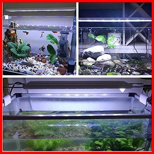 LEDGLE 水槽ライト ledアクアリウムライト 10W 39個LED 50~60cm対応 熱帯魚/観賞魚飼育・水草育成・水槽照明用 省エネ 長寿命 (39LED灯)_画像6