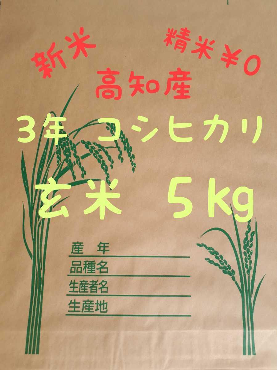 送料込み 令和3年産 高知県産 コシヒカリ玄米5㎏(袋込み)_画像1