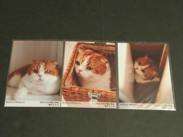 欅坂46 菅井トム hustlepress 特典生写真 3種コンプ ライブ・握手会グッズの画像
