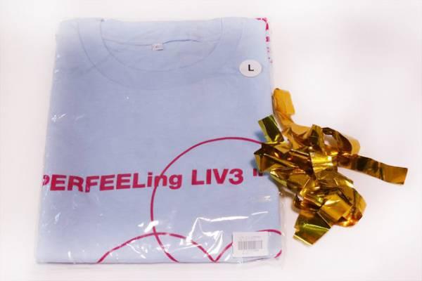 【激レアおまけつき!】SOUL'd OUT 2012ツアー Tシャツ L水色