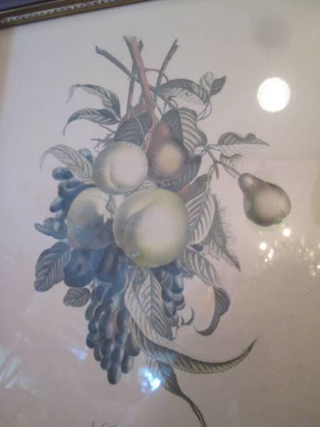 希少!フランスアンティーク Old 果物の壁掛けFrance Antique /店舗ヨーロッパ蚤の市ブロカントイギリスparisインテリア_画像3