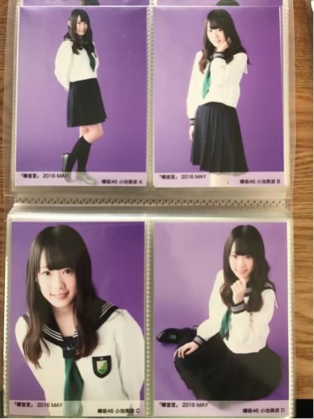 欅坂46 生写真 欅宣言 MAY コンプ ABCD 小池美波 ライブ・握手会グッズの画像