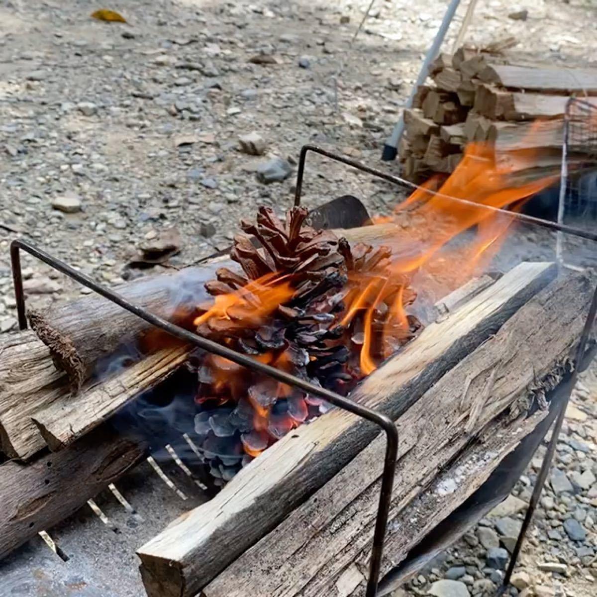 特大松ぼっくり入り 天然着火剤 焚き火 BBQ リース ハンドメイド素材に 12個入り