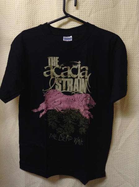 11 バンドTシャツ アカシアストレイン ACACIA STRAIN (Youth L)
