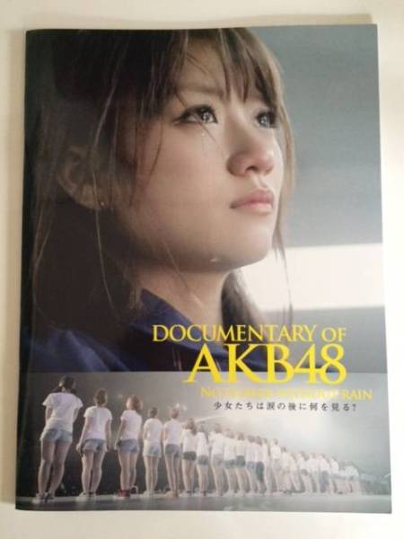 AKB48 DOCUMENTARY OF AKB48 映画パンフレット・第3弾 ライブ・総選挙グッズの画像