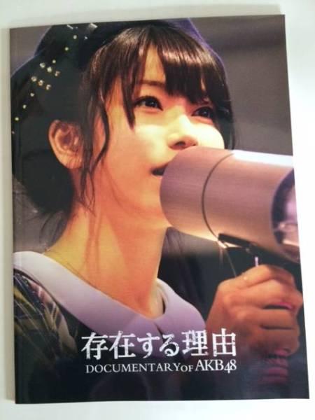 AKB48 DOCUMENTARY OF AKB48 映画パンフレット・第5弾 ライブ・総選挙グッズの画像
