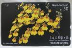 【テレカ】オンシジューム らんの里 堂ヶ島 50度▽NO-J1360