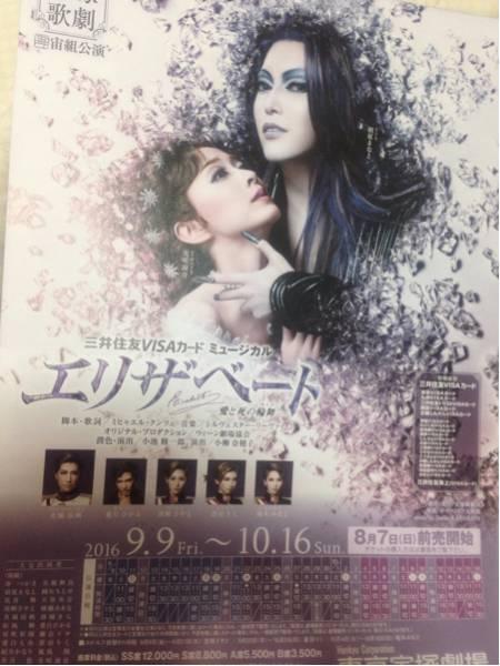 宝塚チラシ 宙組エリザベート新人公演ステージトーク おまけDVD