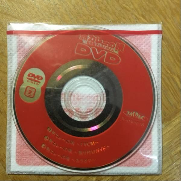 松田聖子&神田沙也加(SAYAKA) 熟カレーの唄 DVD