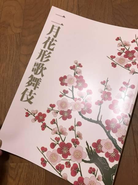 ★平成二十四年 博多座 二月花形歌舞伎パンフ 亀治郎 右近★