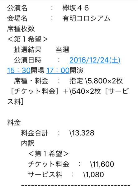 12/24 欅坂46 クリスマスライブ 2連番 落札者支払い&発券