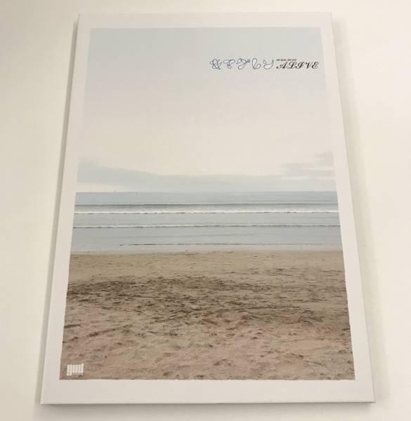 キマグレン 2010ツアーALIVE 写真集 (フォトブック)パンフレット