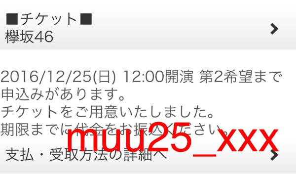 12/25 12:00 昼 欅坂46 有明 クリスマスライブ 同伴入場 ライブ・握手会グッズの画像
