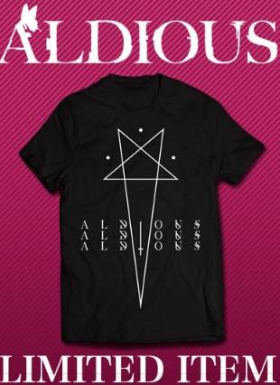 未使用Tシャツ/Aldious/アルディアス/size L