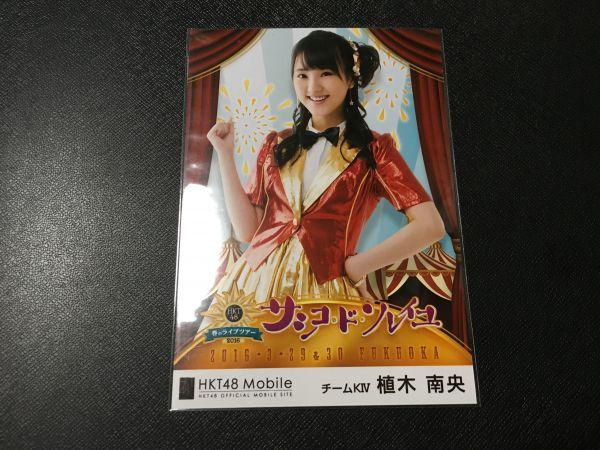HKT48 植木南央 春のライブツアー モバイル 壁紙生写真 当選品