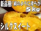 超希少☆新品種☆しっとり滑らか甘い【シルクスイート】5kg