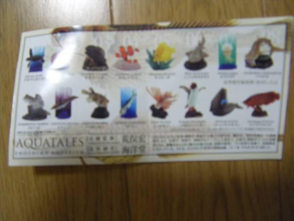 新江ノ島水族館への誘い 5種類_画像1