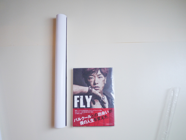 ZEN FLY グッズ フォトエッセイ high&low