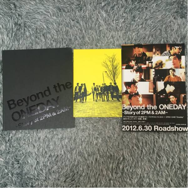 Beyond the ONEDAY ~story of 2PM&2AM~ DVD&パンフレット