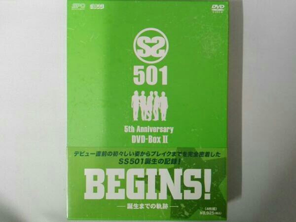 SS501 BEGINS!~誕生までの軌跡~5th Anniversary DVD-BOXⅡ コンサートグッズの画像