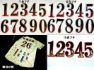 炎背番号ワッペン阪神巨人中日横浜日ハム楽天ロッテ西武ホークス