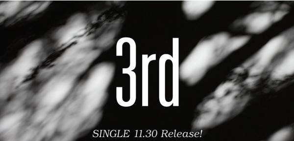 欅坂46 3rd シングル 二人セゾン 全国握手会 握手券 応募券 10枚