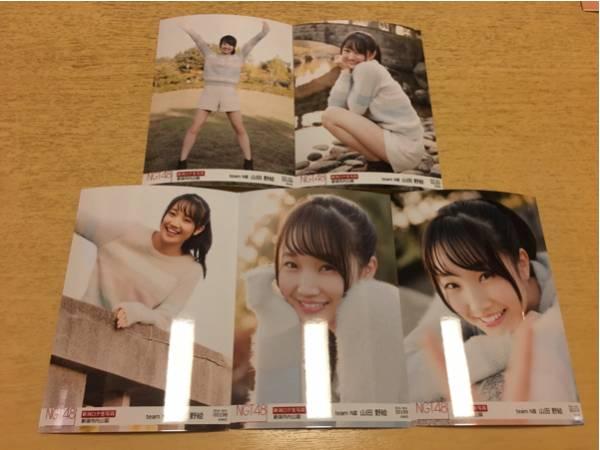 NGT48 生写真 ロケ november 11月 5種 コンプ 山田野絵 ライブグッズの画像