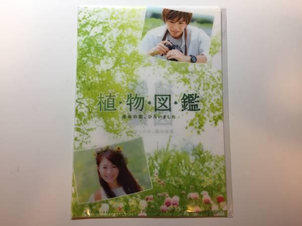 植物図鑑 運命の恋、ひろいました クリアファイル 三代目 岩田