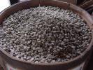 ★お好きなコーヒー生豆3㎏選べます。4350円★