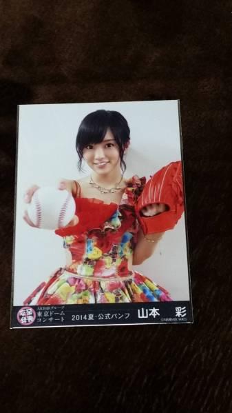 AKB48G 東京ドームコンサート 2014年夏・公式パンフ 山本彩  ライブ・総選挙グッズの画像