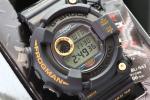 未使用完品 99限定 G-SHOCKフロッグマン DW-8200BU-9AT ゴールド